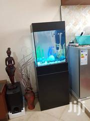 Medium Size Aquarium | Pet's Accessories for sale in Central Region, Kampala