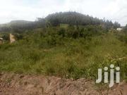 50 Titled Acres In Gomba Maddu 21km From Maddu Town At 2.8M Each | Land & Plots For Sale for sale in Western Region, Kisoro
