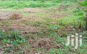 Plot In Kitende Mazzi For Sale | Land & Plots For Sale for sale in Central Region, Kampala