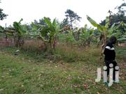 3acres on Sale Located at Wobulenzi   2km Off Main Rd  Land Has: Bae | Land & Plots For Sale for sale in Central Region, Kampala