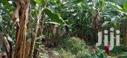 14 Decimals Land For Sale Mutundwe | Land & Plots For Sale for sale in Central Region, Wakiso