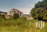 They Are 2 Plots of 100*100ft in Kitovu Entebbe Road at 55M | Land & Plots For Sale for sale in Central Region, Kampala