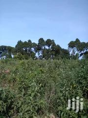 Land For Sale In Nambere Luwero | Land & Plots For Sale for sale in Central Region, Luweero