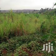 Six(6)Acres on Sale- In Gayaza 700mitars From Tarmac Road Each at 120m | Land & Plots For Sale for sale in Central Region, Kampala