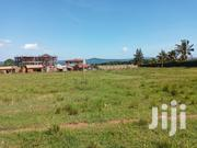 Very Sweet and Big Plot on Quick Sale After Busabaala With Lake View | Land & Plots For Sale for sale in Central Region, Kampala