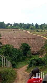 Gayaza Dundu 100ftby100ft | Land & Plots For Sale for sale in Central Region, Wakiso