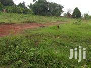 2 Acres Of Land And 11 Decimals With Ready Titles At Namulonge-buso | Land & Plots For Sale for sale in Central Region, Wakiso