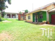 Hot Deal House for Sale in Entebbe Walk Able Distance to the Highway | Houses & Apartments For Sale for sale in Central Region, Kampala