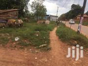 Land In Kampala For Rent | Land & Plots for Rent for sale in Central Region, Kampala