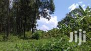 Ten Acres Land In Kasawo For Sale | Land & Plots For Sale for sale in Central Region, Mukono