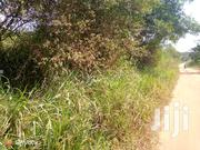 150 Acres of Land for Sale at Kiwoko Town Council   Land & Plots For Sale for sale in Central Region, Luweero