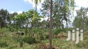 15 Acres Land In Seeta Namuganga For Sale | Land & Plots For Sale for sale in Central Region, Mukono