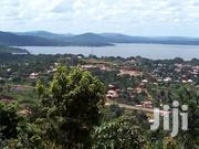 1 Acre of Land for Sale at Kigo Hill | Land & Plots For Sale for sale in Central Region, Wakiso