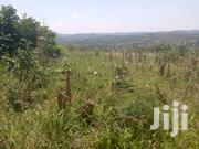 2 Titled Acres In Kikonge Along Mityana Rd 7km From The Main Rd | Land & Plots For Sale for sale in Central Region, Wakiso