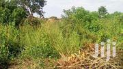Amazing 117 Acres For Sale In Kakoge-luweero Each Is At 3m | Land & Plots For Sale for sale in Central Region, Kayunga