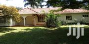 House Is for Rent in Kololo | Houses & Apartments For Rent for sale in Central Region, Kampala