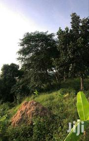 2 Acres of Land for Sale Along Katosi Road   Land & Plots For Sale for sale in Central Region, Mukono