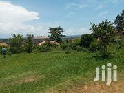 Half Acre on Quicksale Heart of Buziga Heights With Clear Lake View | Land & Plots For Sale for sale in Central Region, Kampala