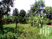 Land In Kira Mulawa For Sale   Land & Plots For Sale for sale in Central Region, Kampala
