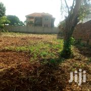 Plot of Land for Sale in Najjera-Buwate   Land & Plots For Sale for sale in Central Region, Kampala