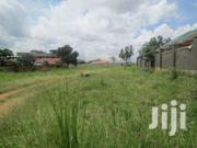 50x100 At 55m Not Negotiable In Kirinya - Namataba With Its Tittle | Land & Plots For Sale for sale in Central Region, Kampala