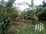 Plot for Sale at 35m in Gayaza | Land & Plots For Sale for sale in Central Region, Kampala