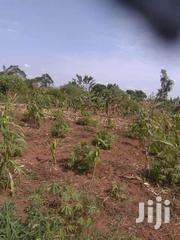 600 Acres In Kitimbwa Kayunga @ 3m Each | Land & Plots For Sale for sale in Central Region, Kayunga