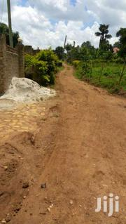 Ntawo-festino City 50ft By 100ft   Land & Plots For Sale for sale in Central Region, Mukono