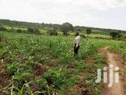 FARMING LAND AROUND UGANDA | Land & Plots For Sale for sale in Central Region, Masaka