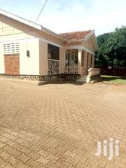 Houses For Rent In Kitintale Mutungo Hill | Houses & Apartments For Rent for sale in Central Region, Kampala