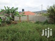 Land Of 50x100 With Its Le In Jogo, Sonde | Land & Plots For Sale for sale in Western Region, Kisoro