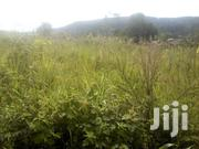 2 Titled Acres In Bujjuko Along Mityana Rd 4.5km Off Main Rd | Land & Plots For Sale for sale in Central Region, Mpigi