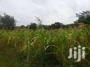 3 Square Mile Land On Sale In Nakaseke-wabwato Eah Acre At 3m | Land & Plots For Sale for sale in Central Region, Luweero