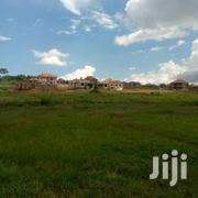Kira Shimon Road 50x100ft Plot Of Land For Sale | Land & Plots For Sale for sale in Central Region, Kampala