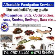 Affordable Fumigators | Automotive Services for sale in Central Region, Kampala