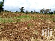 118fts By 180fts Plot Of Land On Sale At Bukaya Njeru At UGX35M | Land & Plots For Sale for sale in Eastern Region, Jinja