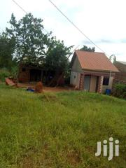 Plot For Sale 50x50ft @8m Ugx Bira Bujuko Town | Land & Plots For Sale for sale in Central Region, Kampala