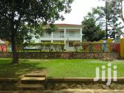 Owner Of This Big Mansion Allows Guest House Business Here Kabalagala   Houses & Apartments For Rent for sale in Central Region, Kampala