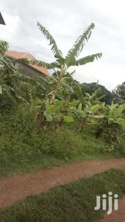 Land In Nkumba | Land & Plots For Sale for sale in Western Region, Kisoro