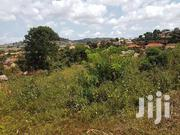 20 Decimals Plot For Sale In Zana At 67 | Land & Plots For Sale for sale in Central Region, Kampala