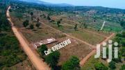 Cheap Plots, Namayumba Town @ 5 Million And 6 Million | Land & Plots For Sale for sale in Central Region, Wakiso