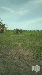 Suitable For Rice , Yams | Land & Plots For Sale for sale in Central Region, Luweero