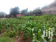 30 Decimals Prime Land At Bukasa Muyenga | Land & Plots For Sale for sale in Central Region, Kampala