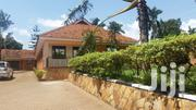 4bedroom Bungalow Plus 3 Boyz Quarter Suitable For Office In Ntinda Fo | Houses & Apartments For Rent for sale in Central Region, Kampala
