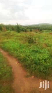 40 ACRES OF LAND ON SALE ON HOIMA ROAD 38KM FROM KAMPALA | Land & Plots For Sale for sale in Central Region, Kampala