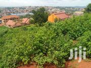 100x100 Ft Plot At Namboole Near Stadium | Land & Plots For Sale for sale in Central Region, Kampala