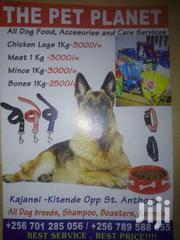 The Planet | Dogs & Puppies for sale in Central Region, Kampala