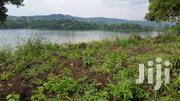 11 Acres Of Titled Lakeside Land For Sale In Fort Portal.   Land & Plots For Sale for sale in Western Region, Kabalore