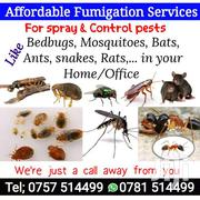 Fumigation | Automotive Services for sale in Central Region, Kampala