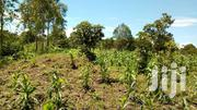 6 Acres Of Lnad For Sale In Mukono-kabimbiri Each At 20m | Land & Plots For Sale for sale in Central Region, Mukono